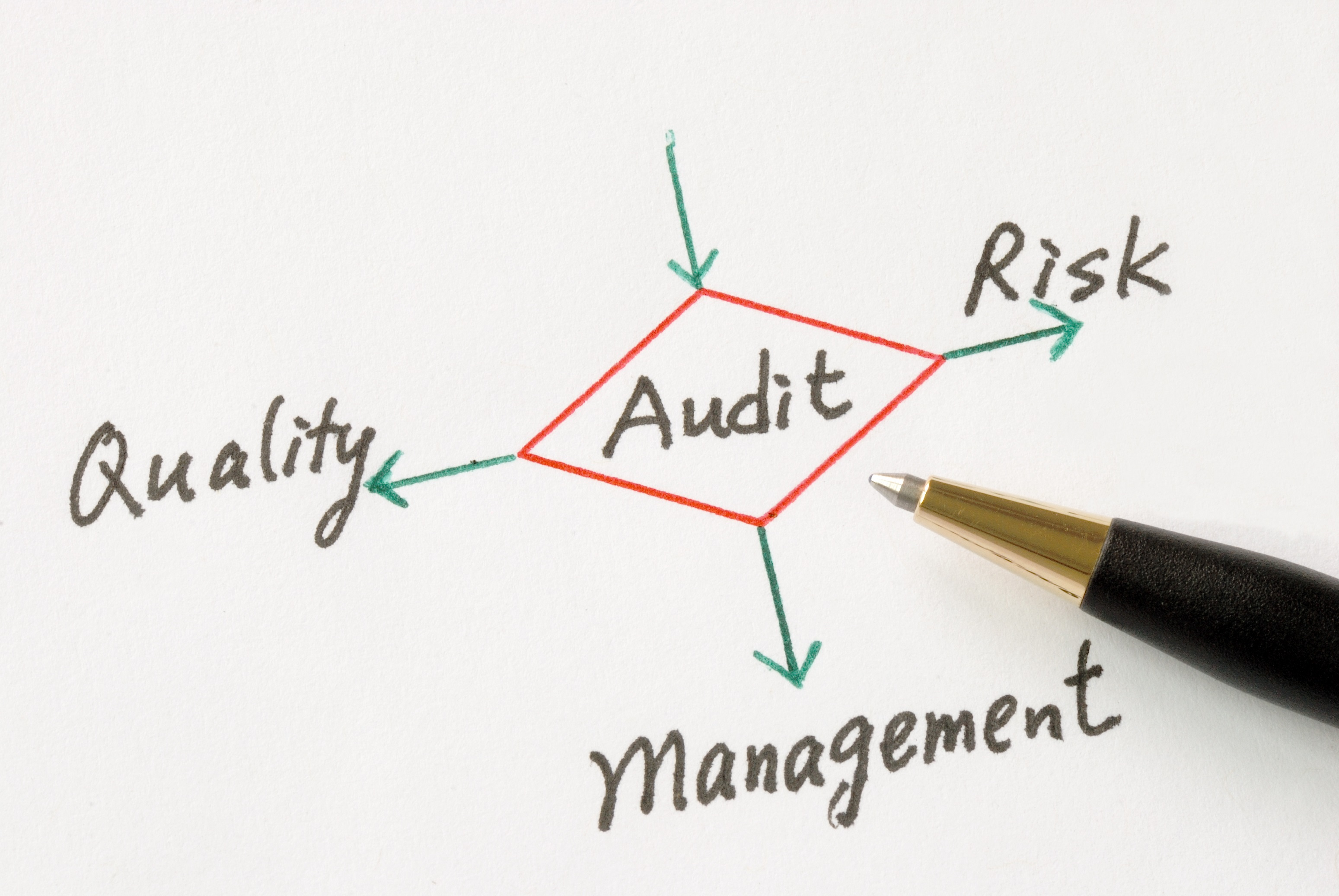Audit software for credit unions from redboard